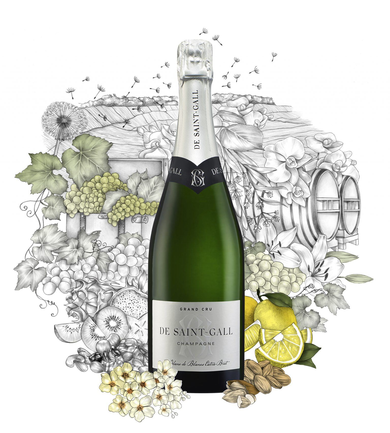 Champagne Blanc de blancs Extra Brut 100% Chardonnay