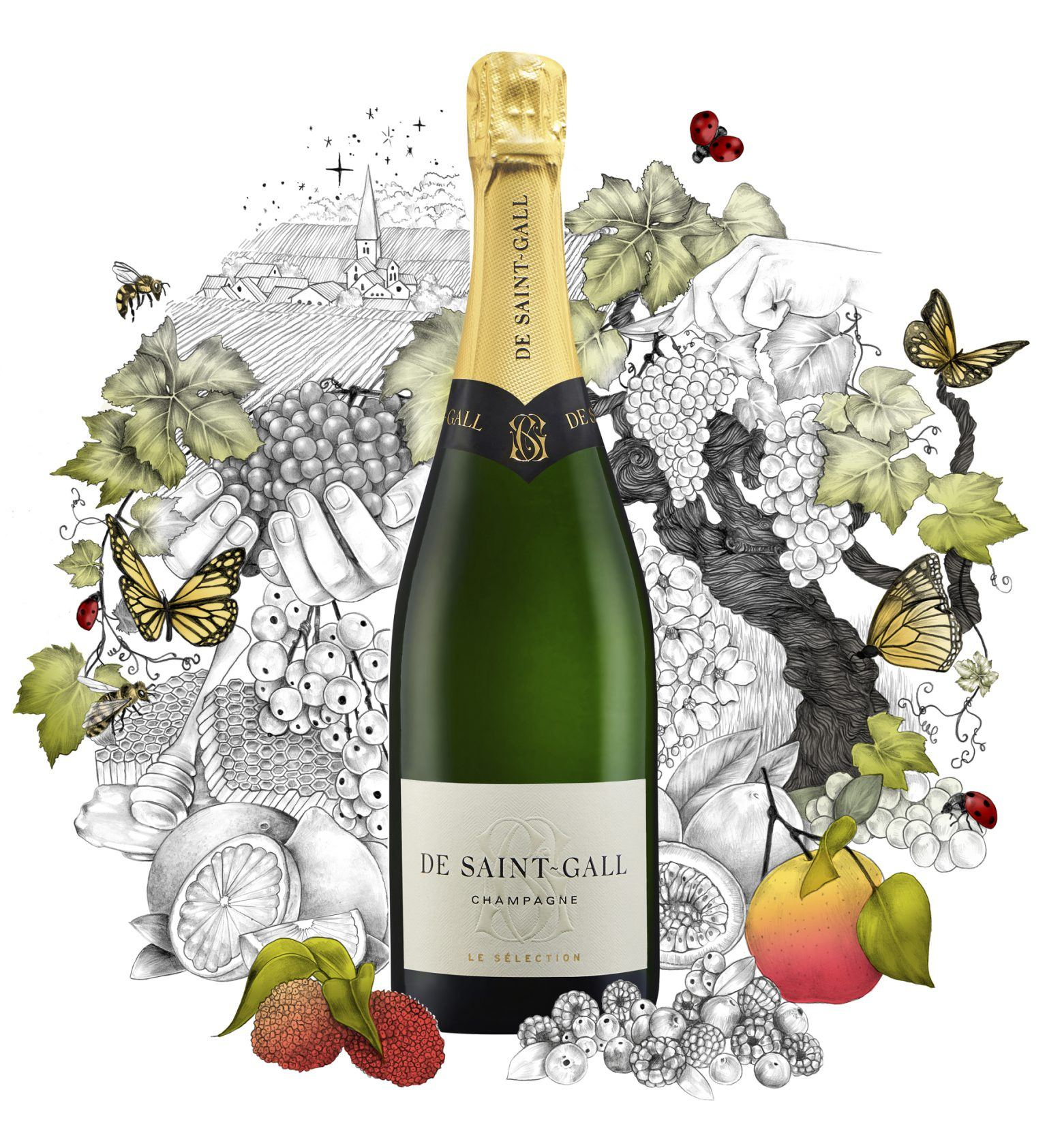 Bon Champagne Le Sélection De Saint-Gall
